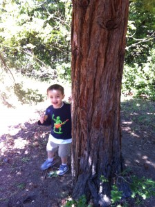 My son Christian in action in Tilden Park
